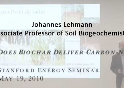 Does Biochar Deliver Carbon-Negative Energy?